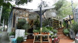 SOLSO FARMを初訪問